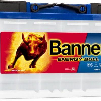Banner 95601 Battery
